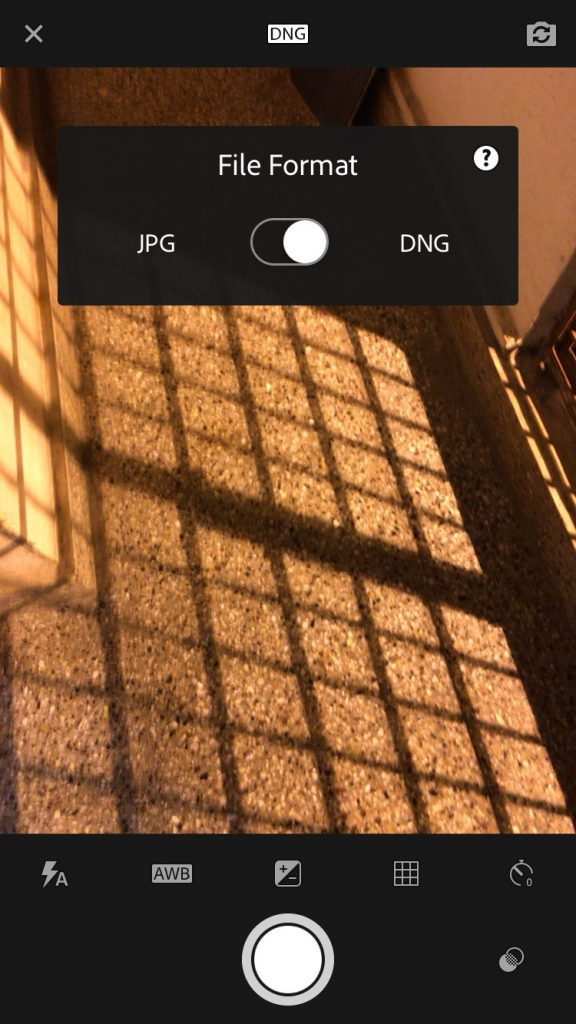 Change DNG to JPG setting on iPhone